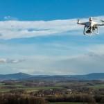 drone-sheep