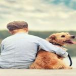 mein bester Freund, Junge sitzt mit seinem Hund am Steg