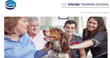 SQP Online Training School