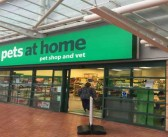 Pets at Home launches workshops for children this half term