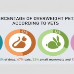 PFMA obesity survey results