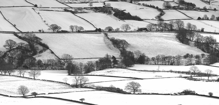 NFU supporting members as heavy snow hits the countryside
