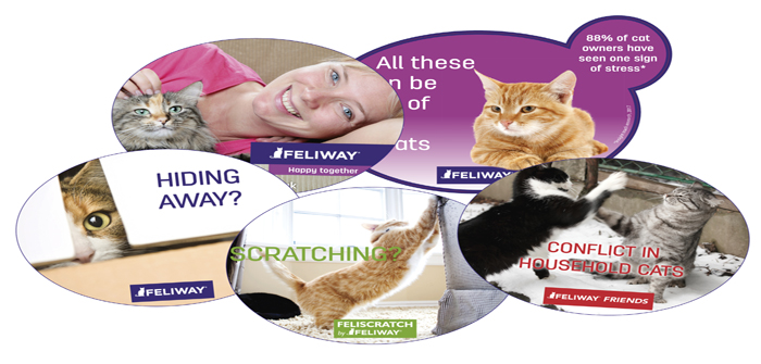 Feliway waiting room material