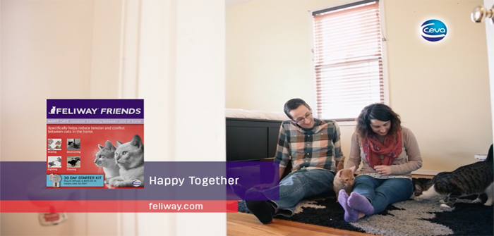 Feliway Friends - advertisement