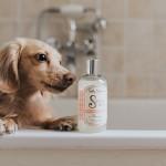 Teddy Maximus - Sooo Soft Shampoo