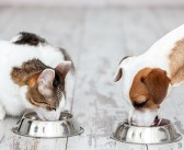 EU and Member States endorse new FEDIA Code of Good Pet Food Labelling