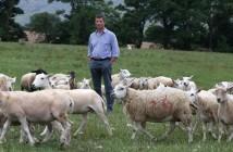 Richard Findlay, the NFU's livestock board chairman