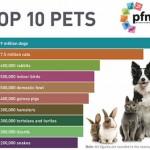 PFMA - Top 10 pets 2019