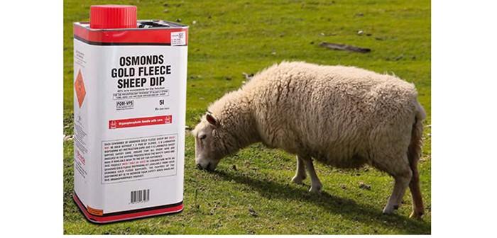 Bimeda – Osmonds Gold Fleece Sheep Dip