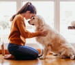 Woman hugging her adorable golden retriever dog at hom