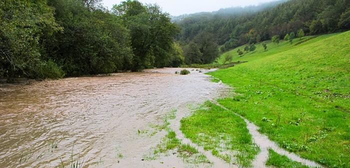 Environmental flooded field