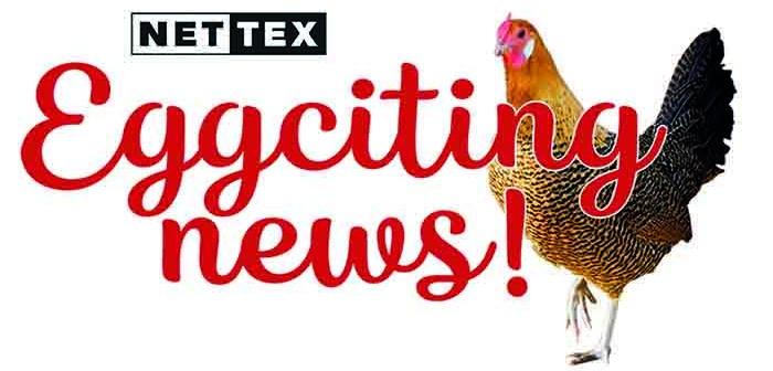 Nettex – Eggciting News