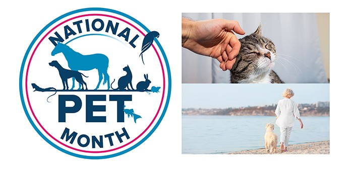 National Pet Month graphic