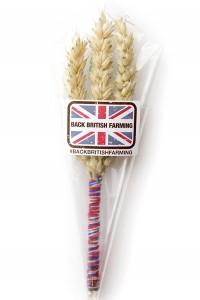 The NFU's wheatsheaf pin badge