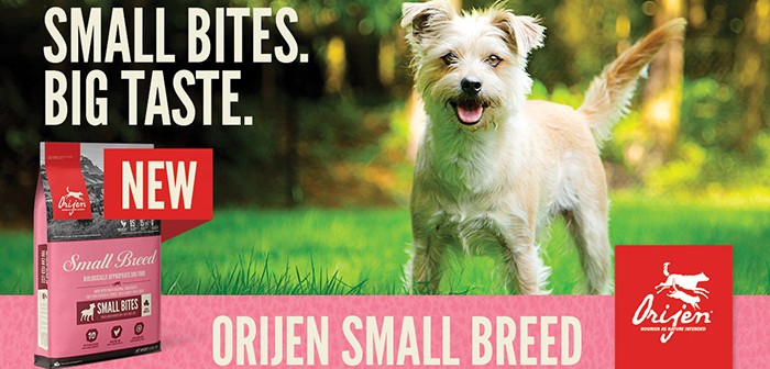 Orijen Small Breed