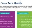Your Pet's Health