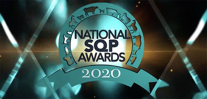 National SQP Awards 2020 graphic