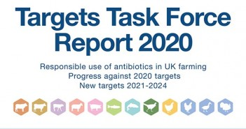 Targets Task Force 2020 report cover