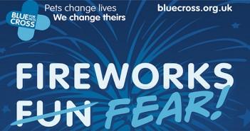 Blue Cross fireworks poster
