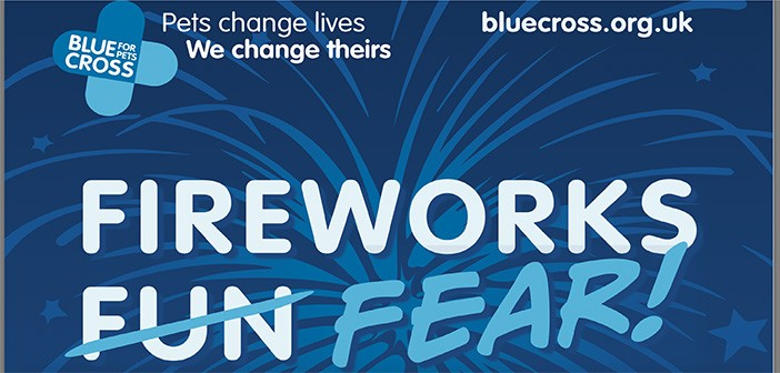 Blue Cross fireworks poster