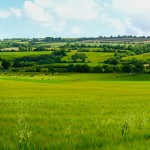 Scenic panoramic view of rolling countryside green farm fields w