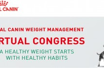Royal Canin virtual congress graphic