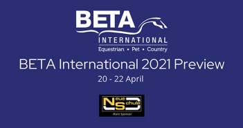 BETA Int Preview Logo Large