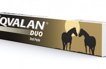 Eqvalan Duo pack