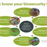 TB – Know your basics