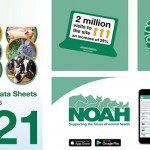 NOAH Compendium collage